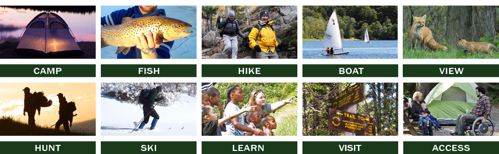 Outdoor activities nys dept of environmental conservation for Activities to do in ny