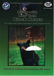 Living with New York Black Bears cover
