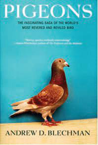 Pigeons: The Fascinating Saga of the World's Most Revered and Reviled Bird cover