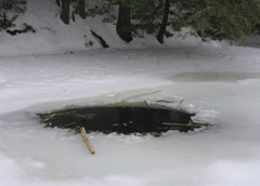 Beaver made this access to their lodge through the frozen pond