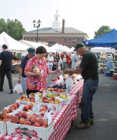 A woman visiting a fruit stand at a farmer's market