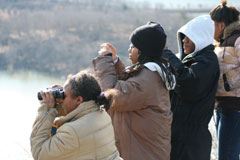 Birdwatchers with binoculars looking for birds in winter