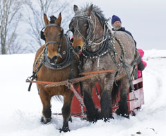 A red sleigh drawn over the snow by two horses