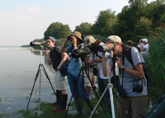 Yooung birders in action at the water's edge