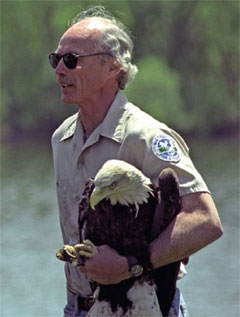 A uniformed DEC employee holds a bald eagle under his arm