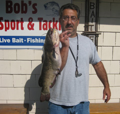 A man in a t-shirt holding a very large brown bullhead fish