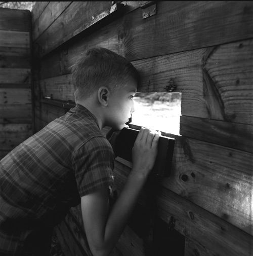 A young boy peeking out of a small window inside a wildlife viewing blind
