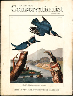 An old cover of the New York State Conservationist featuring bird art