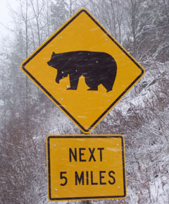 A yellow and black bear crossing sign with a sillhouette of a black bear