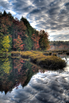 The woods in fall and a dark, cloudy sky reflected in a pond