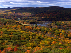 An aerial view of a mountain and forest in fall color