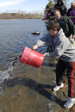 A boy with a red bucket full of young trout, pouring them into the water