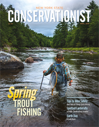 The front cover of the April 2019 Conservationist features trout fishing by Sean Platt