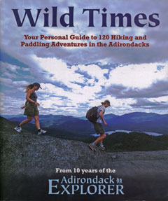 Wild Times book cover showing two hikers on a rocky outcrop with mountains in the distance