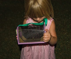 A little blonde girl looking at a firefly in a cage.