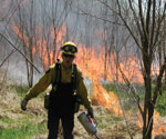 A forest ranger conducting a controlled burn