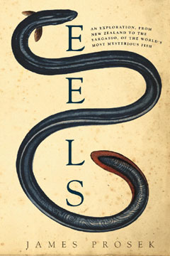 The cover of the book Eels showing an illustration of an eel