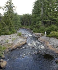 A person stands on the large rocks at the edge of a stream in the woods