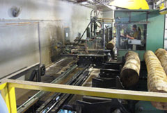 An inside photo of part of a hardwood sawmill operation