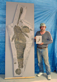 A man stands beside a fossil of a giant eurypterid, while holding a smaller fossil