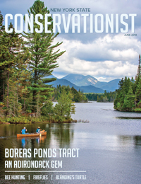 The front cover of the June 2018 issue of Conservationist features the Boreas Ponds Tract photoghraphed by Carl Heilman II