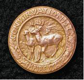 Empire State Conservationist pin