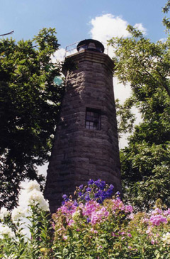 lighthouse flanked by trees with flowers in foreground
