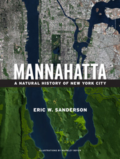 The cover of the book Manahatta, showing Manhattan from the air in 1600 and 2000