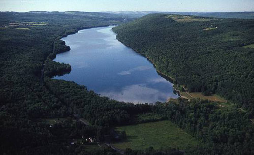An aerial photo of an undeveloped Finger Lake