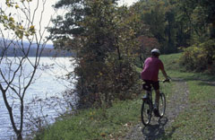 A person biking on a gravel path along a lake