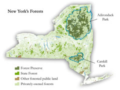 A map of New York showing the Forest Preserves, state forests and other private and public forest areas