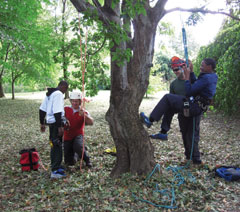 Green Horizons students practice their tree climbing technique with assistance from two instructors