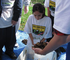 A girl with a gren horizons t-shirt looks at some compost