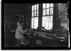 A man seated at work in a laboratory