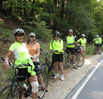A group of cyclists in lime-green shirts at the side of the road