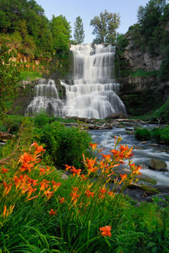 Chittenango falls in summer with orange daylilies in the foreground