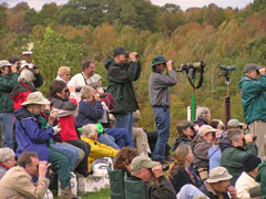 A large group of bird watchers with binoculars and cameras