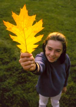 Girl holding dead leaf