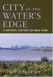 City at the Water's Edge cover