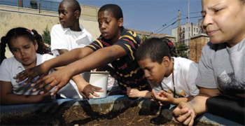 Inner city kids learning about the environment