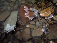 Rocks and pebbles in a stream with ice forming