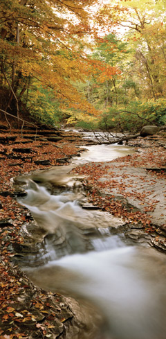 A swiftly flowing creek surrounded by flat rocks and fall foliage