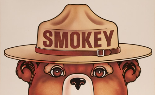 Detail of a cartoon image of Smokey the Bear
