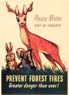 forest conservation slogans