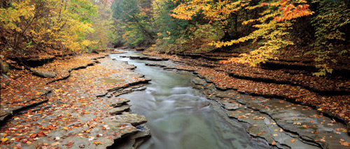 A creek surrounded by flat rocks and trees with fall color