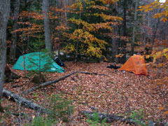 A green and an orange tent pitched in the woods