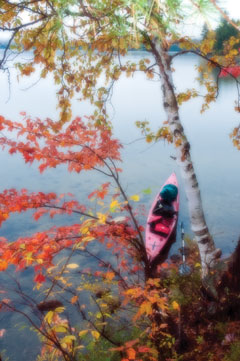 Looking down ona kayak in a lake through fall foliage