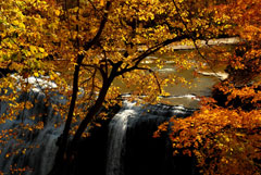 A waterfall seen through orange and yellow fall foliage