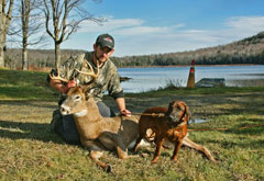 A hunter kneeling by a dead buck holding a Bavarian mountain bloodhound on a leash