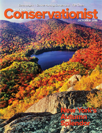 A photo of Peaked Mountain Pond by Carl Heilman II graces the front of the October 2016 Conservationist